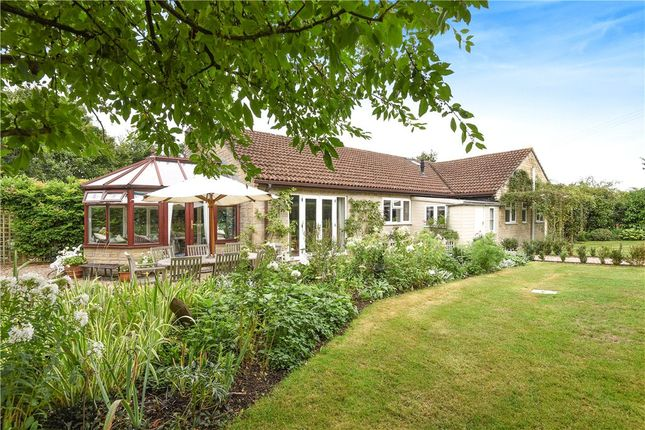 Thumbnail Detached bungalow for sale in King Stag, Sturminster Newton, Dorset