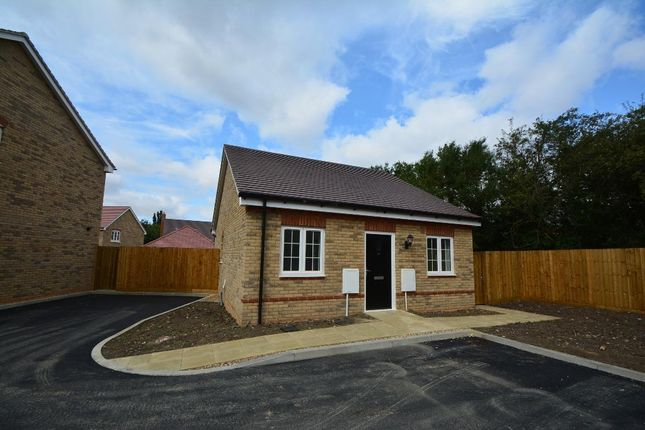 Thumbnail Detached bungalow for sale in Fen Lane, Sawtry, Huntingdon