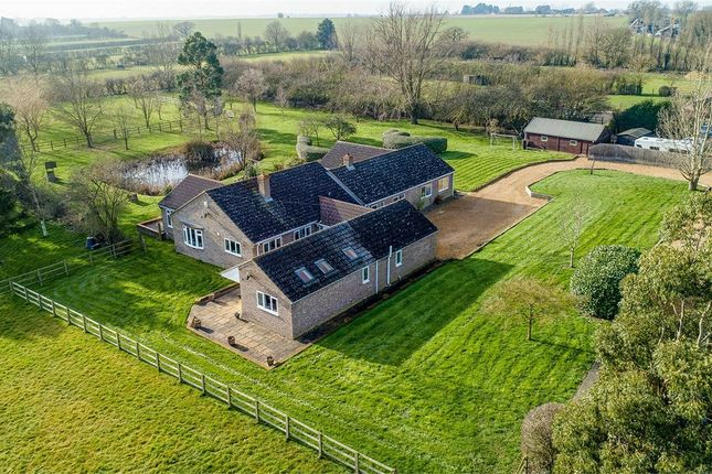 Thumbnail Detached bungalow for sale in Pidley Road, Somersham, Huntingdon