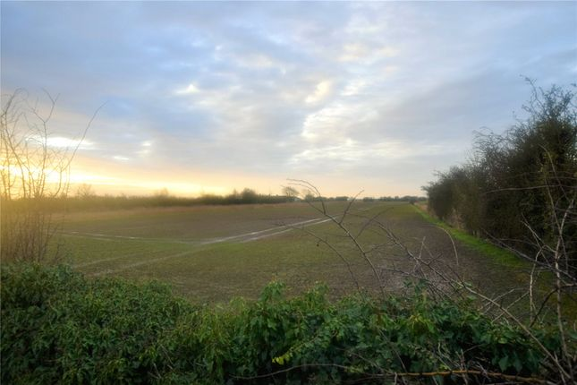 Field of Field, Mumby Road, Hogsthorpe, Lincolnshire PE24