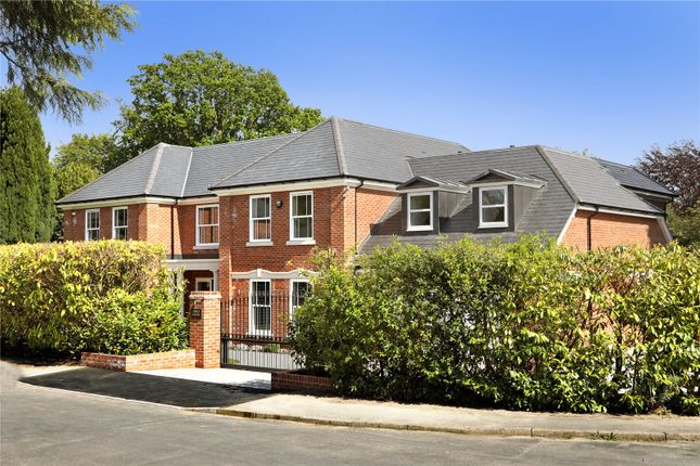 Thumbnail Detached house for sale in Snows Paddock, Windlesham, Surrey