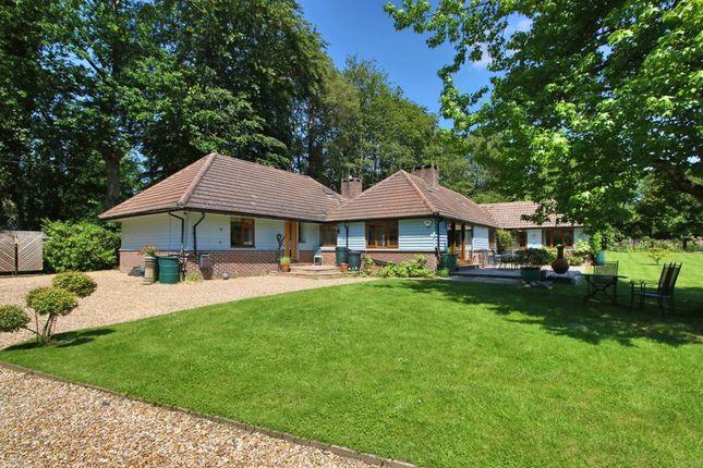 5 bed detached bungalow for sale in London Road, Maresfield, Uckfield TN22