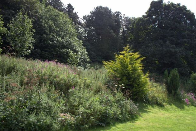 Thumbnail Land for sale in Springfield Meadow, Alnwick, Northumberland