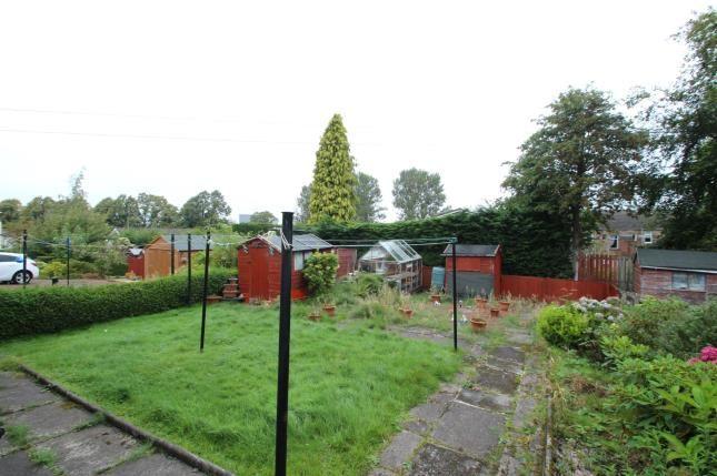 Garden of Novar Street, Hamilton, South Lanarkshire, Scotland ML3
