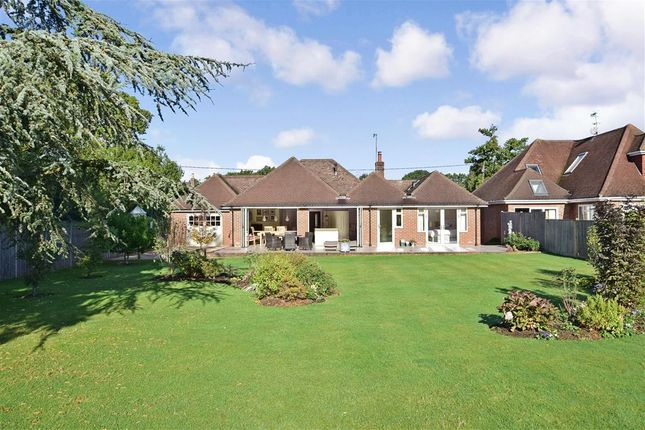 Thumbnail Detached bungalow for sale in Rowly Drive, Rowly, Cranleigh, Surrey
