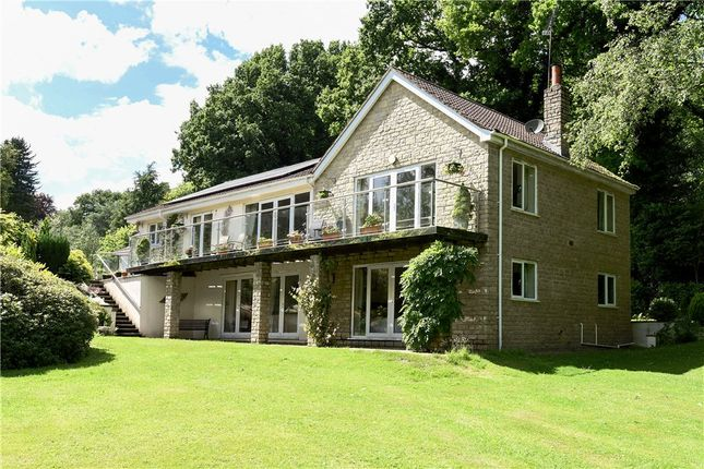 Thumbnail Detached house for sale in Coombe Street, Pen Selwood, Wincanton, Somerset