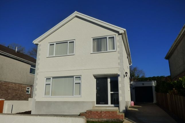 Thumbnail Property for sale in Vale View, Pontneathvaughan, Neath .