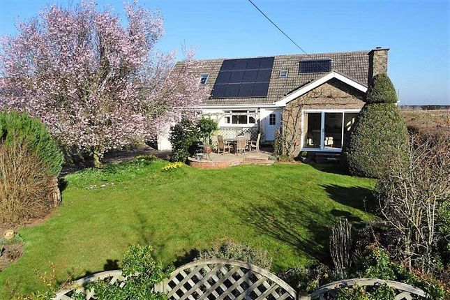 Thumbnail Detached house for sale in Meadowside, Llangrove, Ross-On-Wye