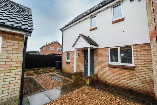 Thumbnail Semi-detached house to rent in Falcon Way, Beck Row, Bury St. Edmunds