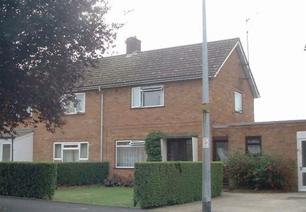 Thumbnail Semi-detached house to rent in Manderston Road, Newmarket