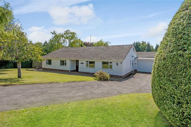 Thumbnail Bungalow for sale in Court House Road, Chepstow, Monmouthshire