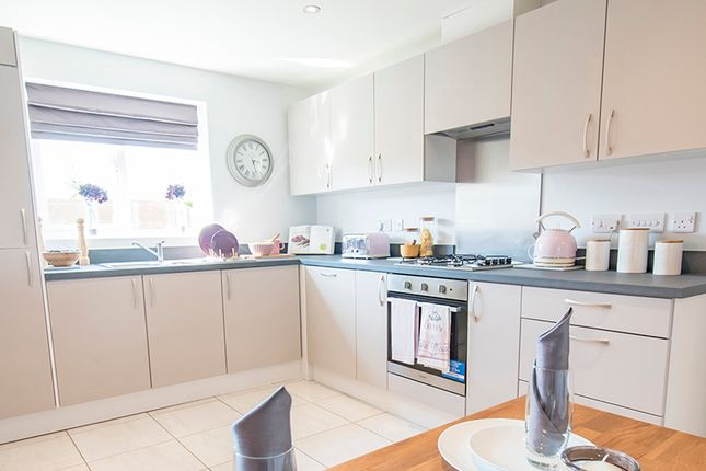 """4 bedroom detached house for sale in """"The Elm"""" at St. Marys Terrace, Coxhoe, Durham"""