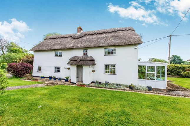 Thumbnail Detached house for sale in The Old Cottage, Kings Stag, Sturminster Newton