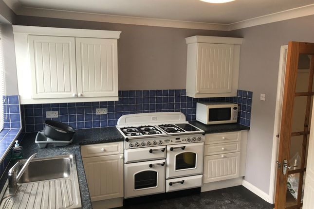 Thumbnail Terraced house to rent in Findon Road, Brighton