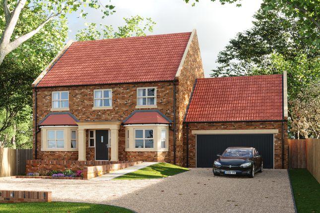 Thumbnail Detached house for sale in New Road, Sutton Bridge, Spalding