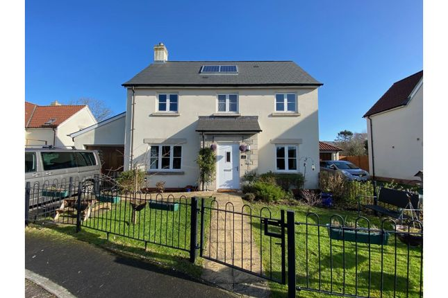 Thumbnail Detached house for sale in Openshaw Gardens, Cheddar