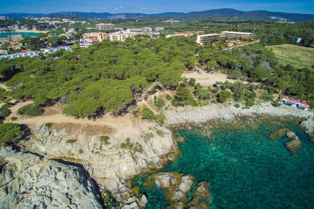 Thumbnail Apartment for sale in Spain, Costa Brava, Palamós, Cbr3553