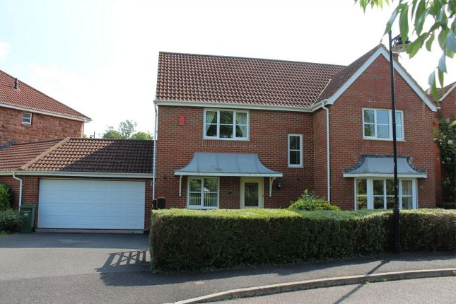 Thumbnail Detached house to rent in Acland Round, Cotford St Luke, Taunton