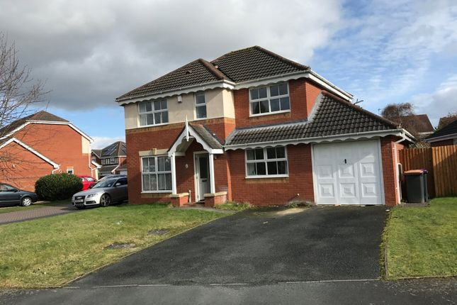 Thumbnail Detached house to rent in Dover Drive, Leegomery, Telford