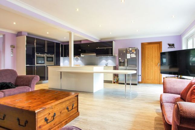 Open Plan Living Dining And Kitchen