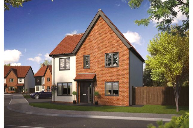Thumbnail Semi-detached house for sale in Plot 53 Wendover Park, Salhouse Road, Norwich