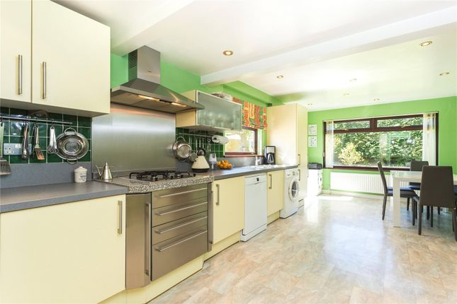 Thumbnail Detached house for sale in Cedar Road, Hutton, Brentwood, Essex