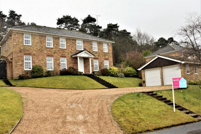 Thumbnail Detached house for sale in Heronscourt, Lightwater, Surrey