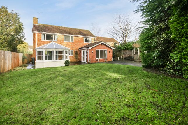 Thumbnail Detached house to rent in Grayshott Laurels, Lindford, Bordon