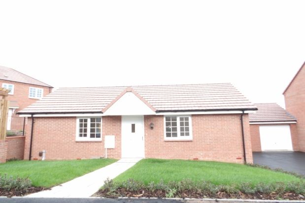 Thumbnail Bungalow to rent in Linnet Drive, Rainworth, Mansfield