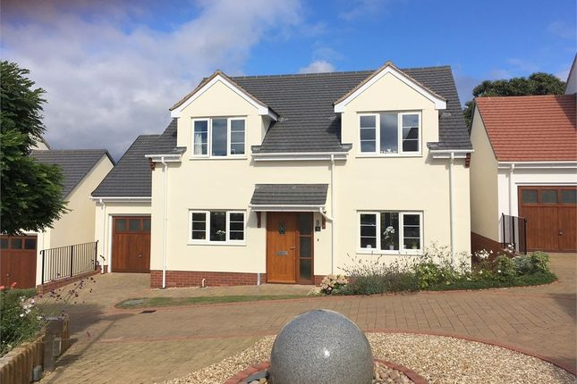Thumbnail Detached house for sale in Westfield Road, Budleigh Salterton