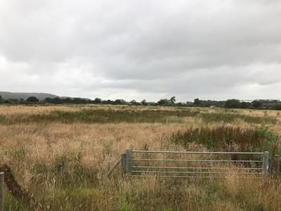 Thumbnail Land for sale in Land At Coton Lane, Tamworth
