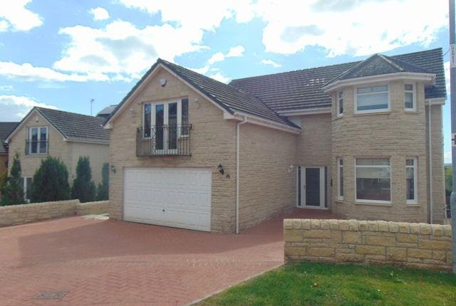 Thumbnail Property to rent in Snead View, Motherwell