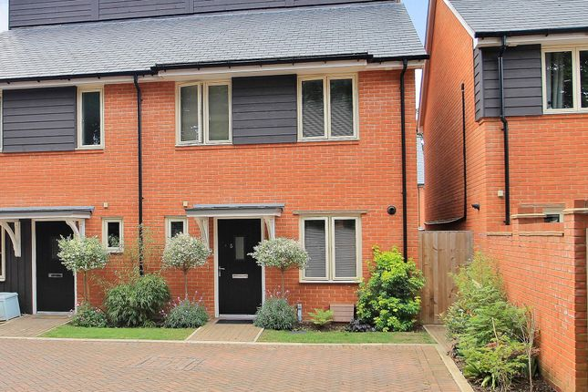 Thumbnail Semi-detached house for sale in Ripley, Woking, Surrey