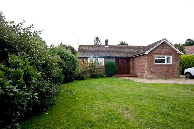 Thumbnail Bungalow for sale in Halstead Road, Eight Ash Green, Colchester