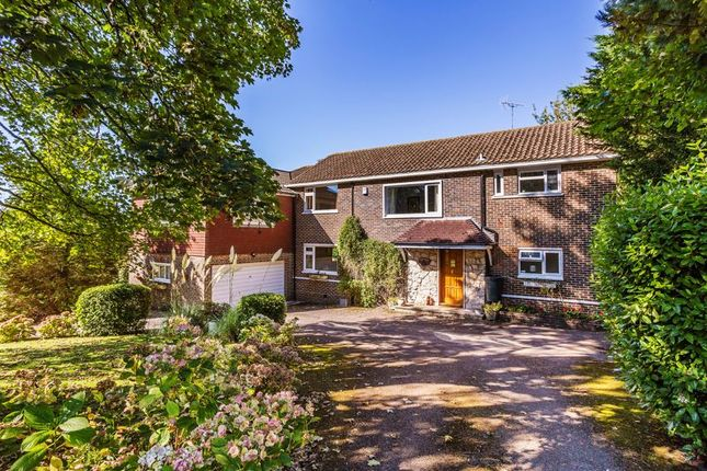 Thumbnail Detached house for sale in Hook Hill, Sanderstead