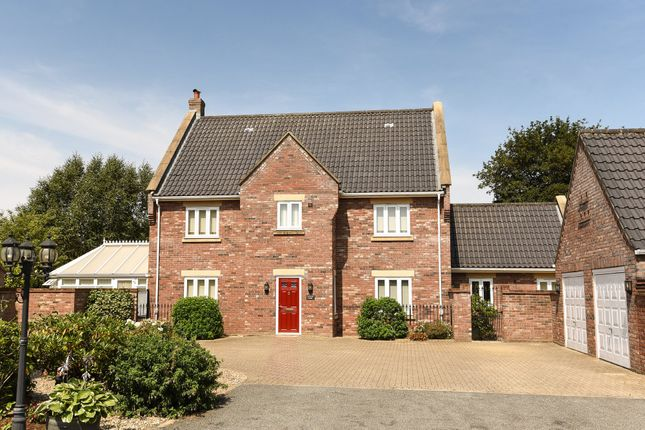 Thumbnail Detached house for sale in Saxon Meadows, Bawdeswell, Dereham