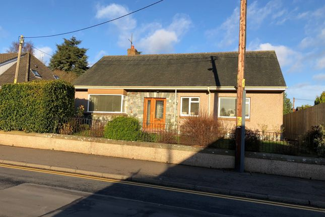 Thumbnail Detached bungalow to rent in Mansfield Road, Scone, Perth