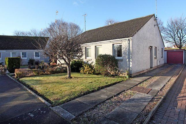 Thumbnail Semi-detached bungalow for sale in Acredales, Haddington, East Lothian