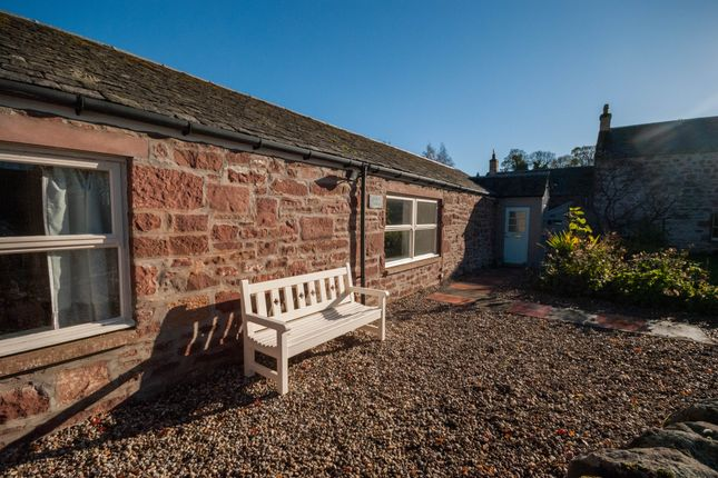 Thumbnail Semi-detached house to rent in Lintrathen, Kirriemuir