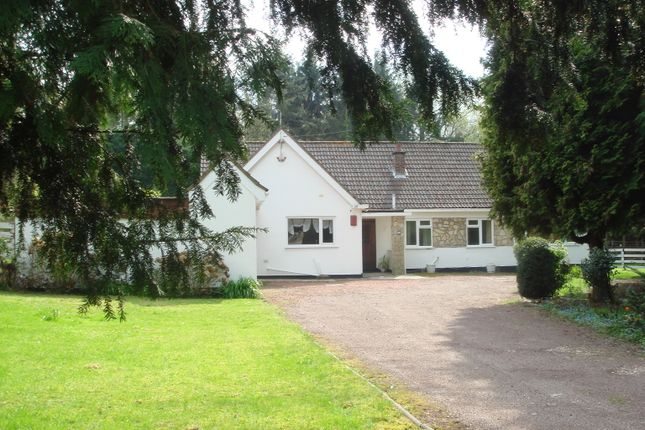Thumbnail Detached bungalow to rent in Moss Lane, Pinner
