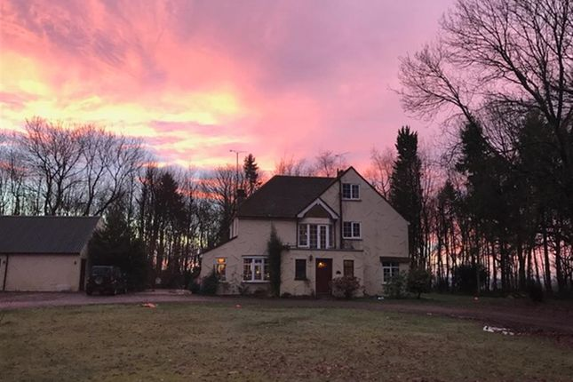 Thumbnail Detached house for sale in Friningham, Maidstone, Kent, Kent