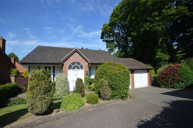 Thumbnail Detached house for sale in Princess Beatrice Close, Lower Hellesdon, Norwich