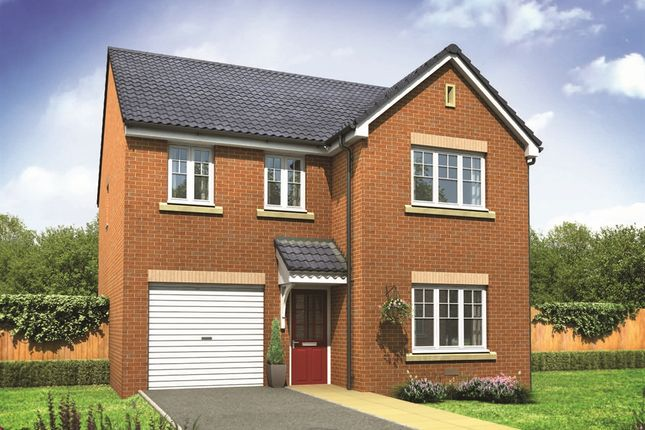 "Thumbnail Detached house for sale in ""The Downing"" at Grange Drive, Carlisle"