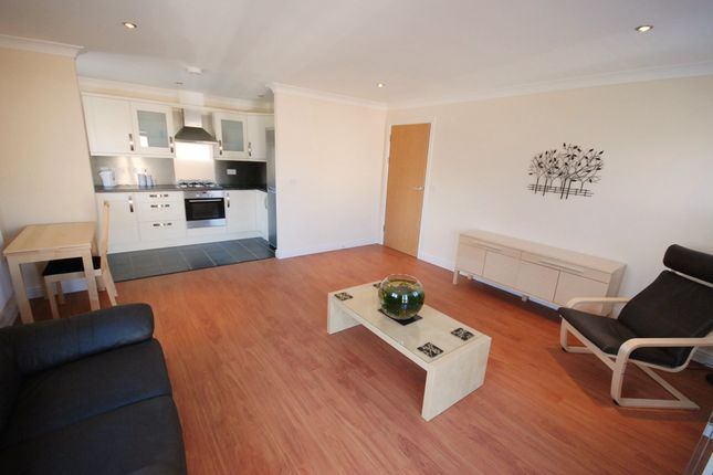 Thumbnail Flat to rent in Ty Rhos, Aberystwyth