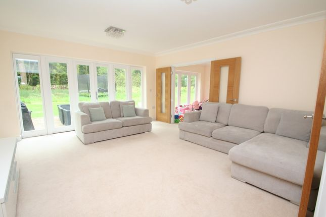Thumbnail Detached bungalow to rent in Woods Green, Wadhurst