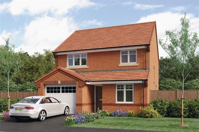 "Thumbnail Detached house for sale in ""Derwent"" at Leeds Road, Thorpe Willoughby, Selby"