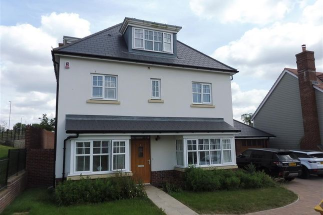 Thumbnail Property to rent in Old House Lane, Haywards Heath