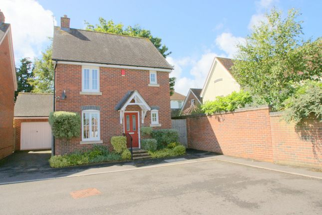 Thumbnail Detached house to rent in Kenelm Close, Sherborne, Dorset