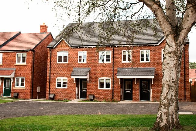 Thumbnail Semi-detached house to rent in Orwell Crescent, Wellington, Telford