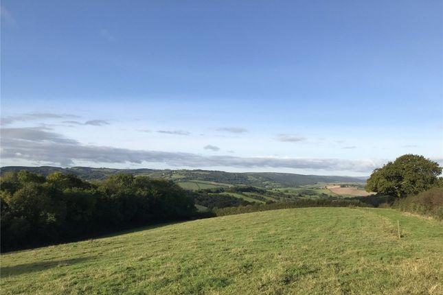 Pasture Land 3 of Longdown, Exeter, Devon EX6